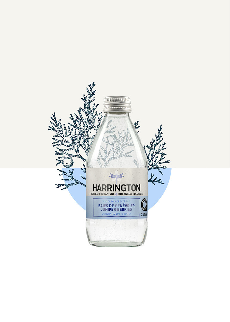 Juniper berry carbonated spring water